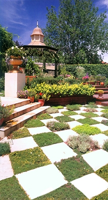 Checkerboard Garden (Photo Backdrop)