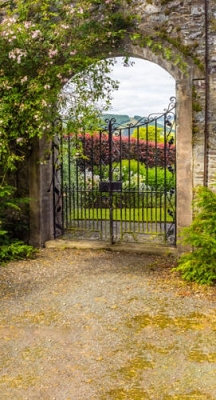 Garden Gate (Photo Backdrop)