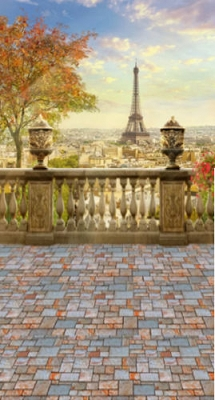 Paris View (Photo Backdrop)