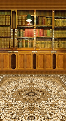 Carpeted Library (Photo Backdrop)